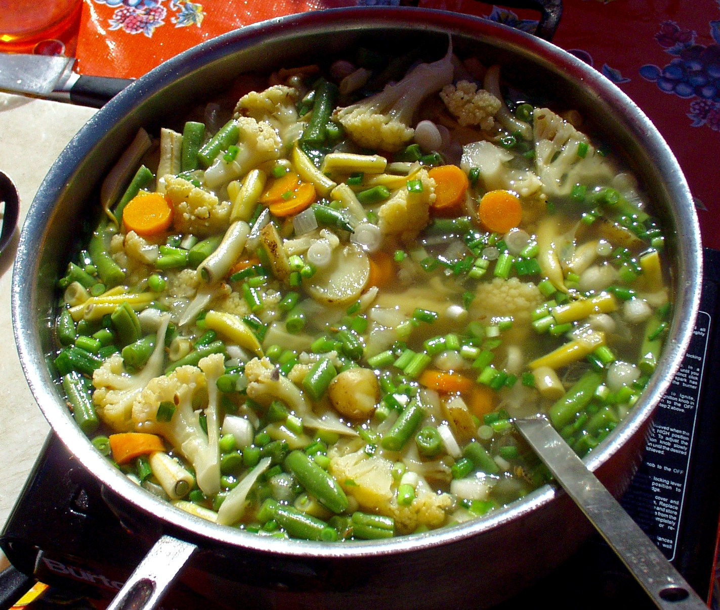 Chef Amy McCray's Vegetable Chowder. Photo copyright 2009 by Zachary D. Lyons.