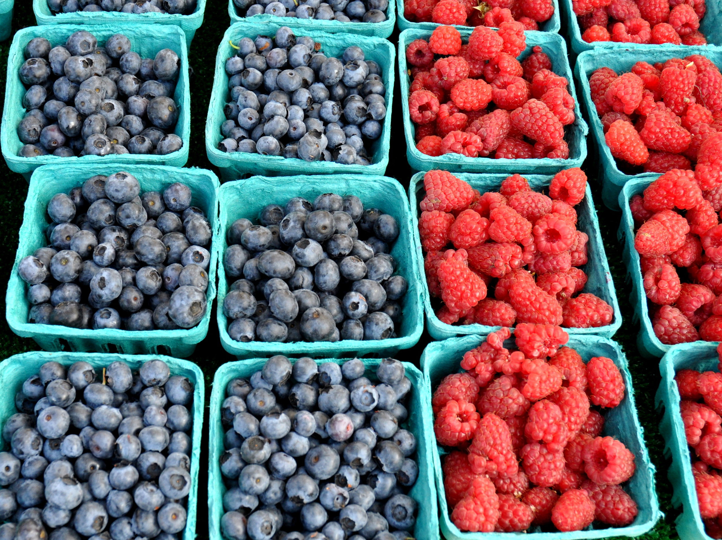 Blueberries & raspberries from Alm Hill Gardens. Photo copyright 2013 by Zachary D. Lyons.
