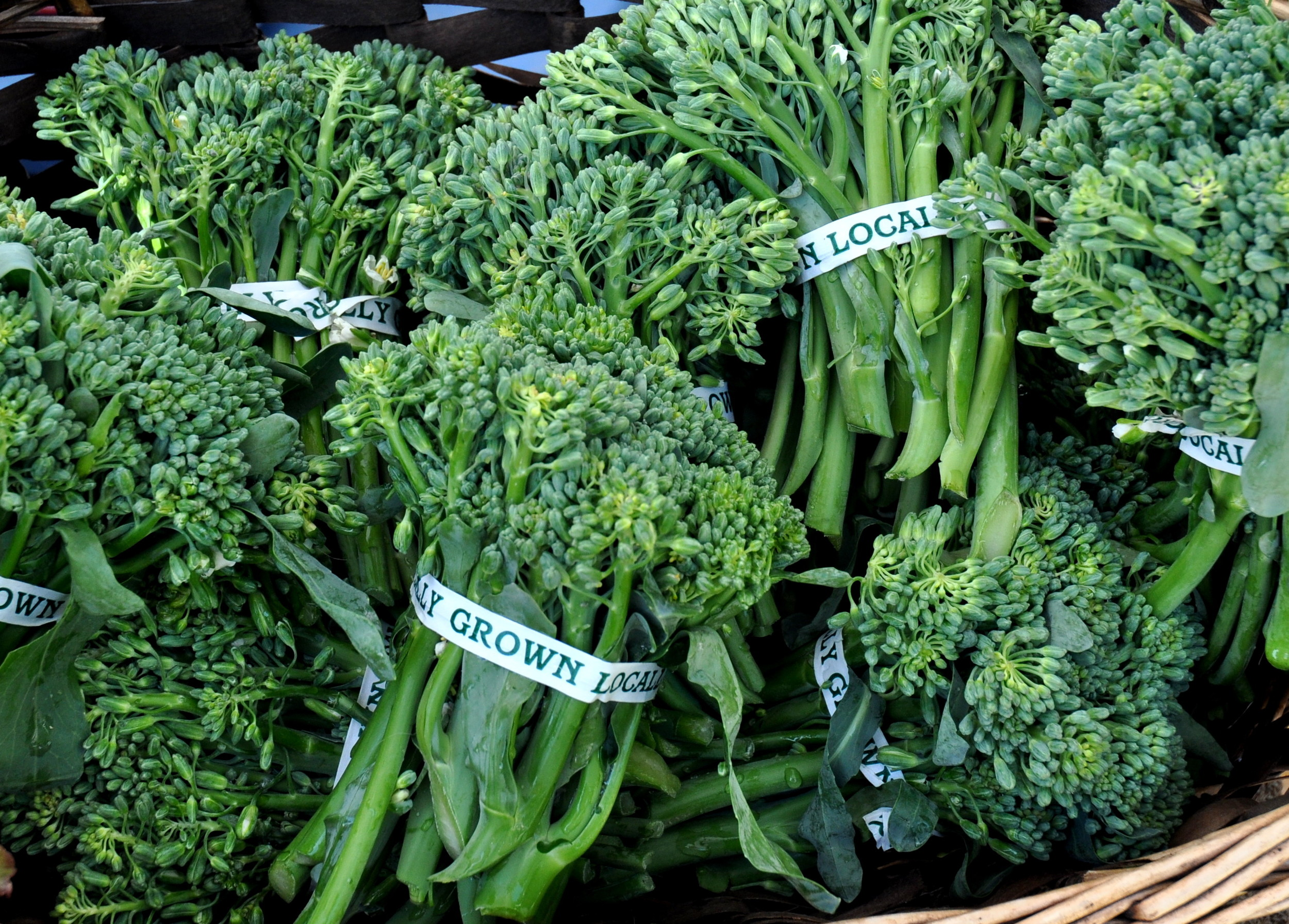 Broccolini from City Grown Farm. Photo copyright 2013 by Zachary D. Lyons.