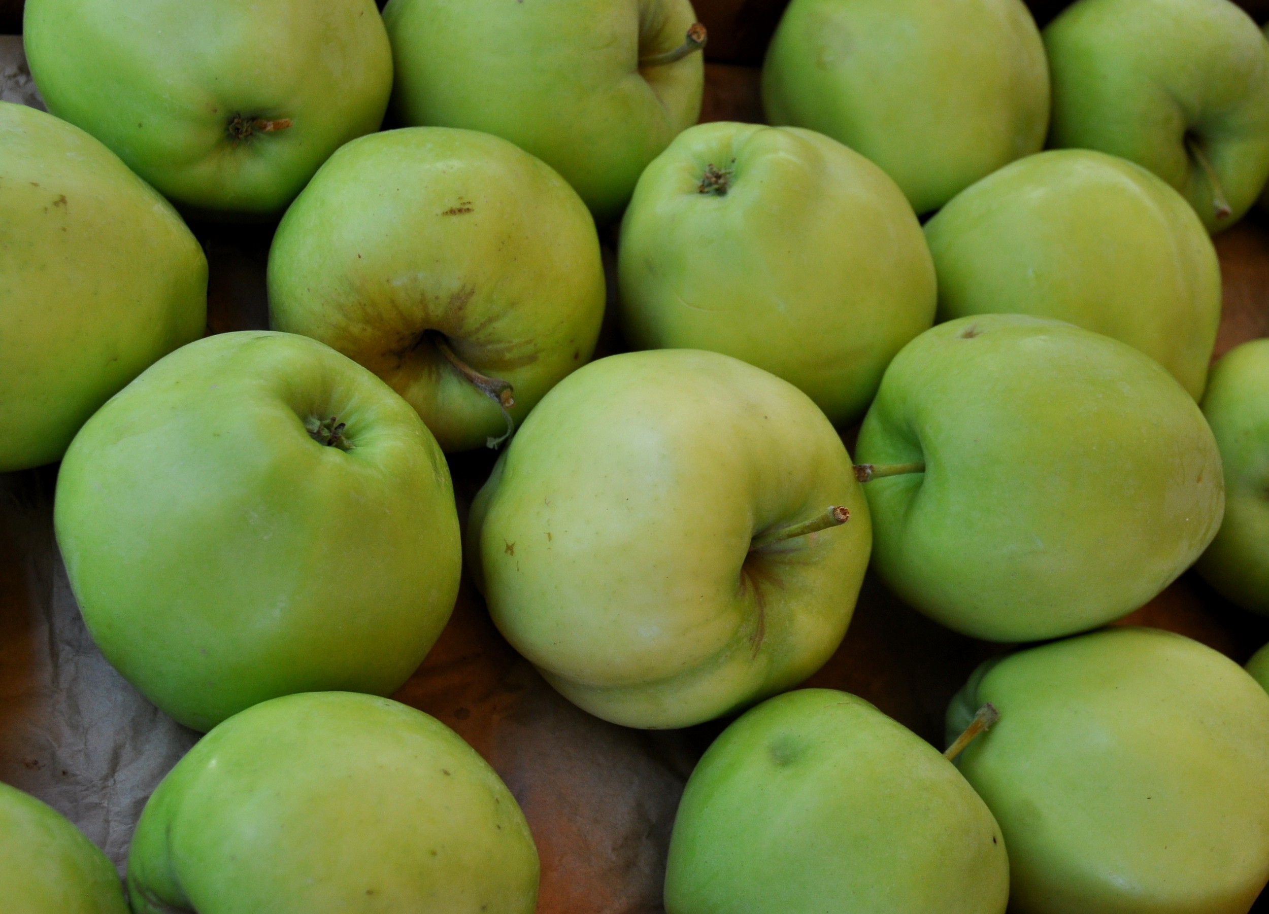 Golden Crisp apples from Collins Family Orchards. Photo copyright 2013 by Zachary D. Lyons.