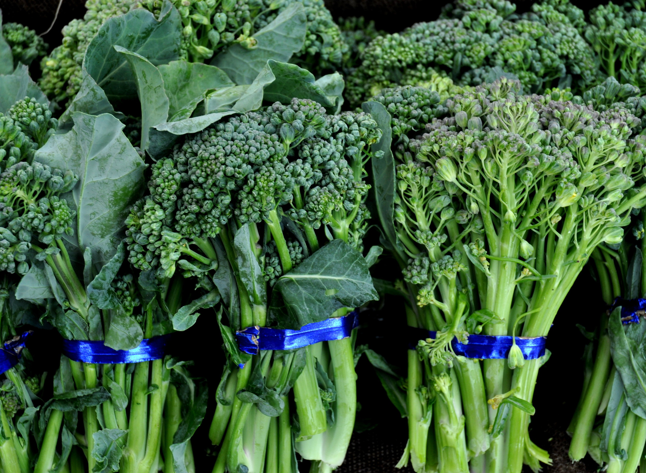 Sprouting broccoli from One Leaf Farm.. Photo copyright 2014 by Zachary D. Lyons.