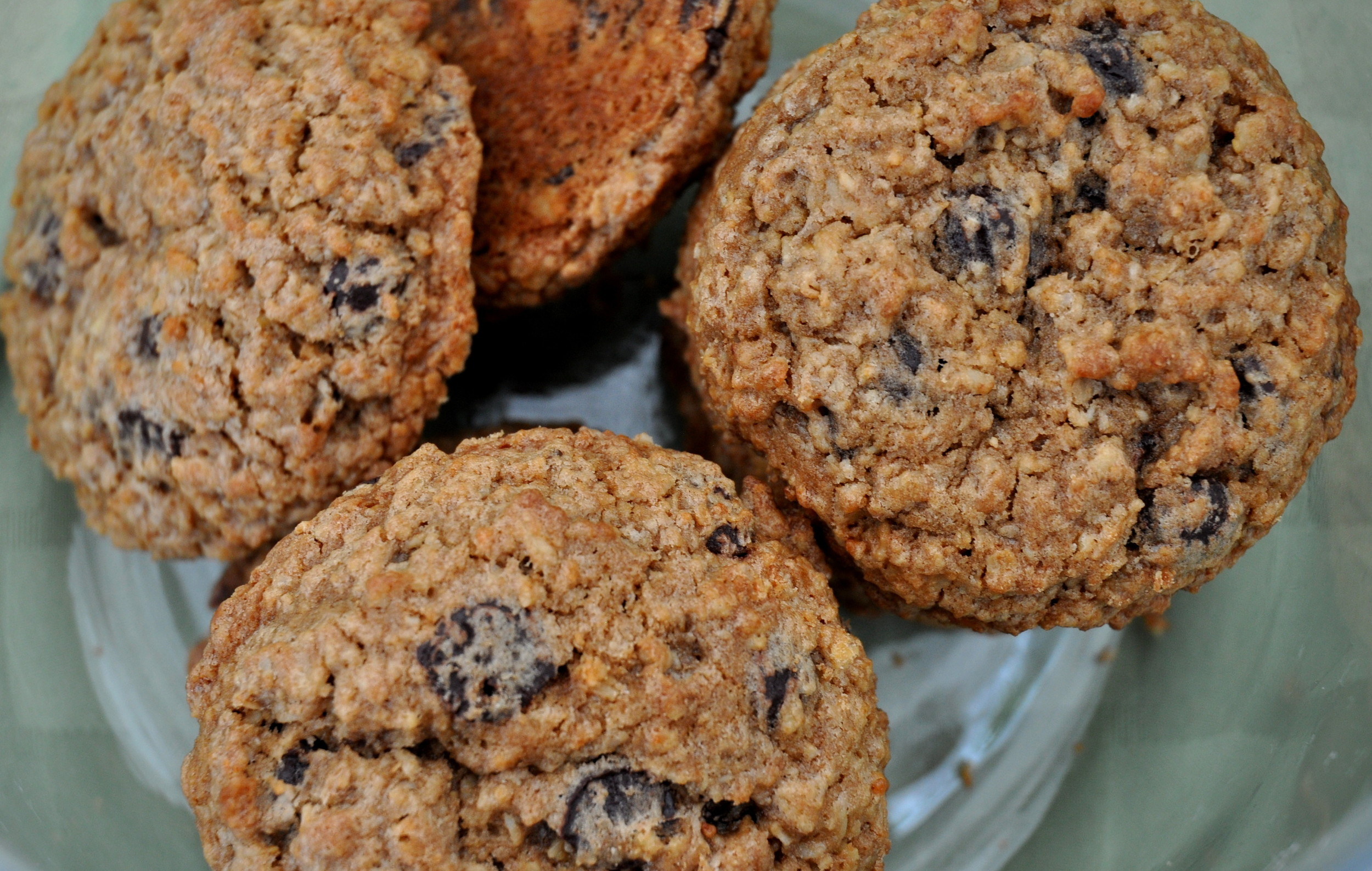 Dark chocolate oatmeal cookies from Pinckney Cookie Cafe. Photo copyright 2014 by Zachary D. Lyons.