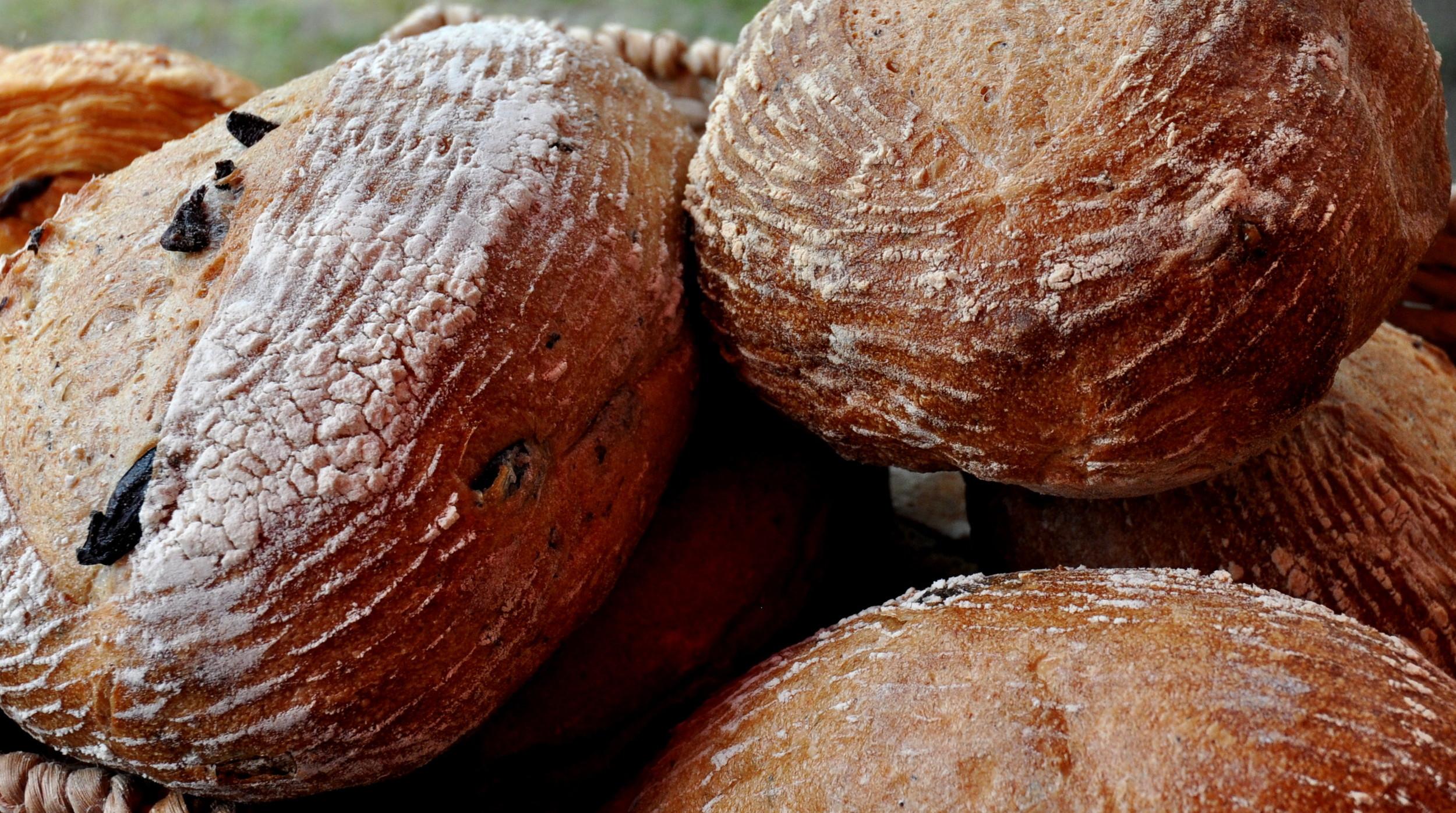 Kalamata olive bread from Snohomish Bakery. Photo copyright 2014 by Zachary D. Lyons.