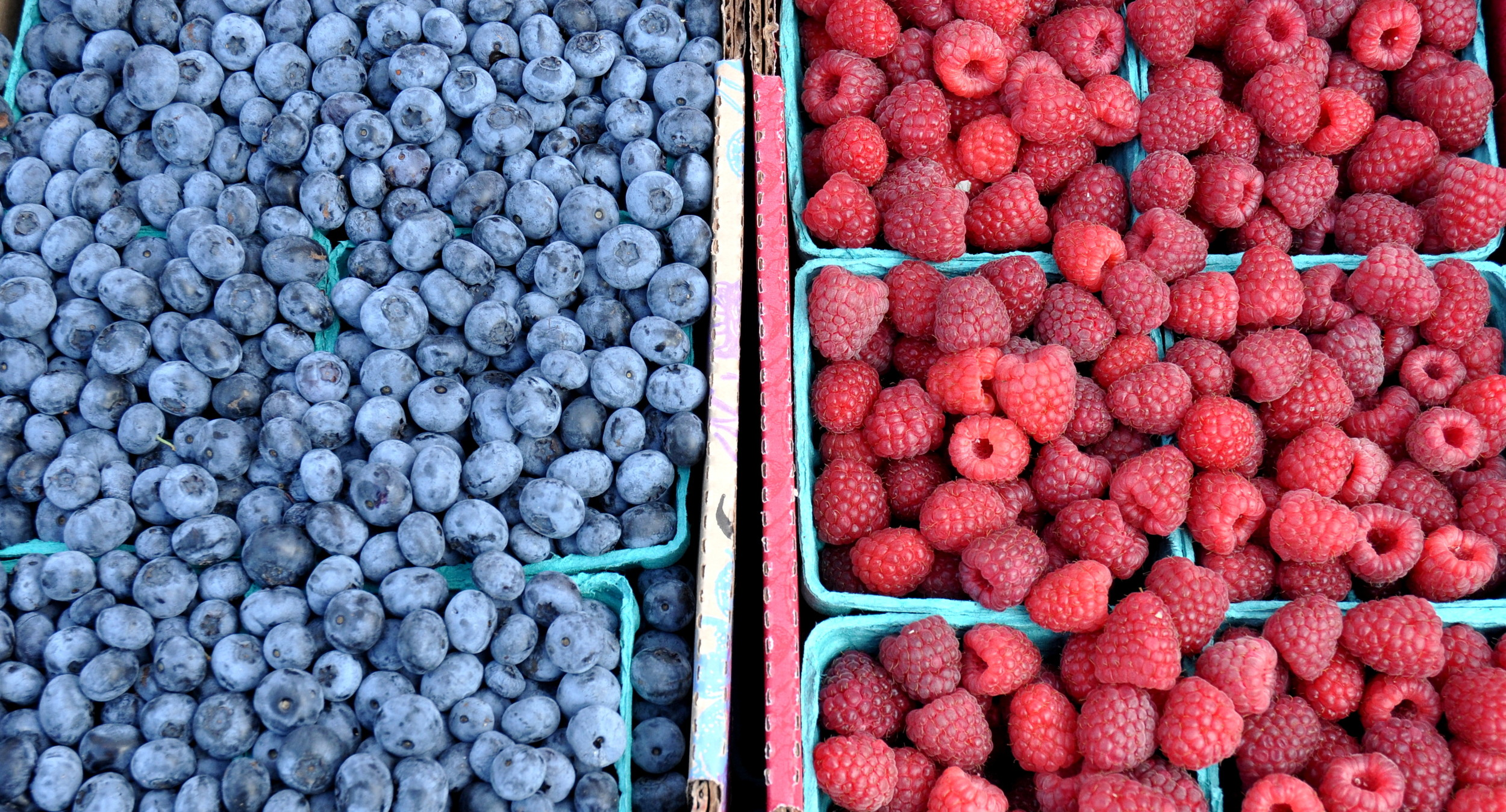 Blueberries and blackberries from Hayton Farms at Wallingford Farmers Market. Copyright Zachary D. Lyons.