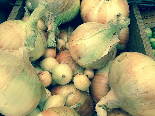 Walla Walla onions from Around the Table Farm in Poulsbo, Wash.