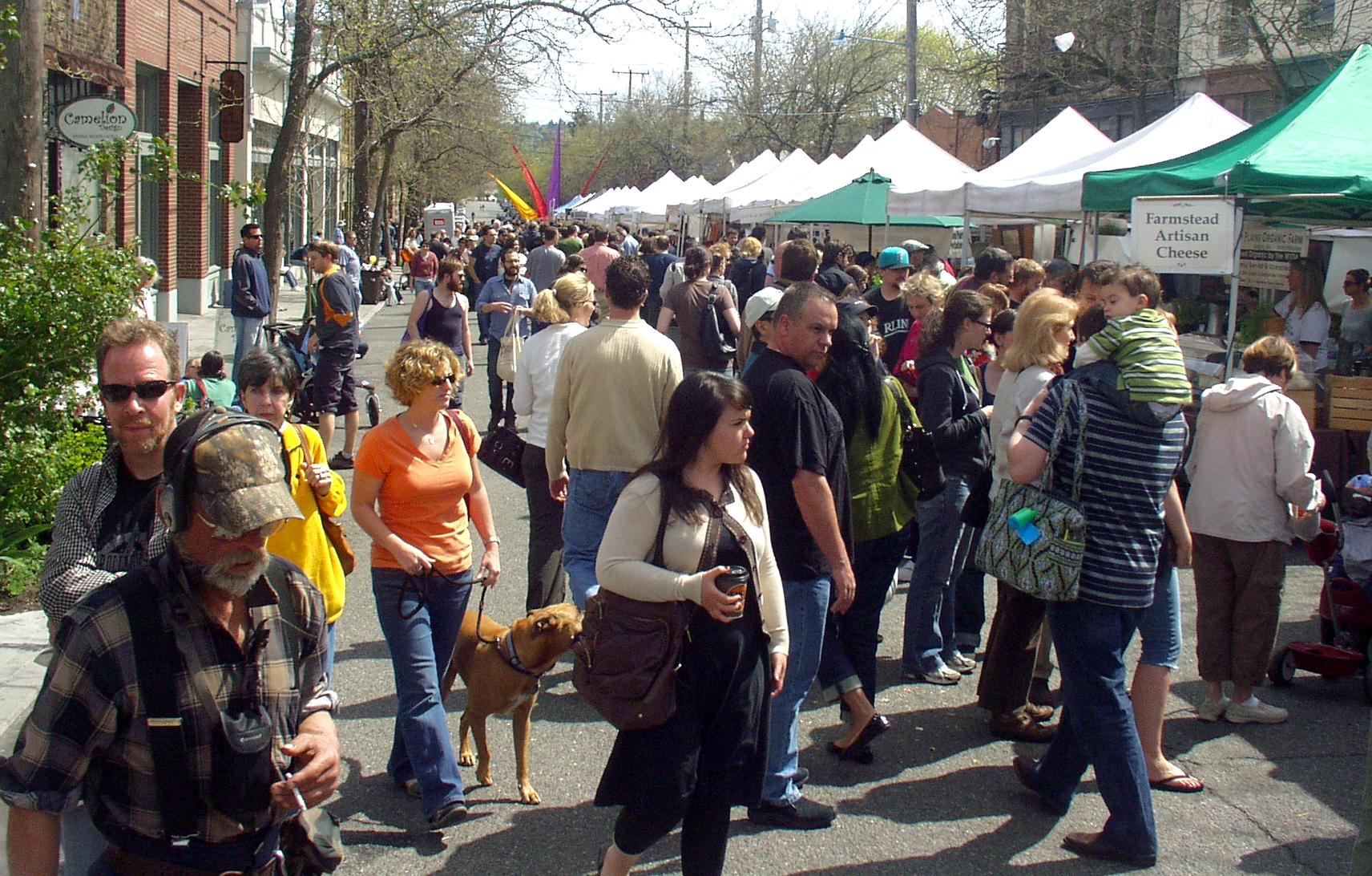 May 3rd was just another sunny Sunday at Ballard Farmers Market. Photo copyright 2009 by Zachary D. Lyons.