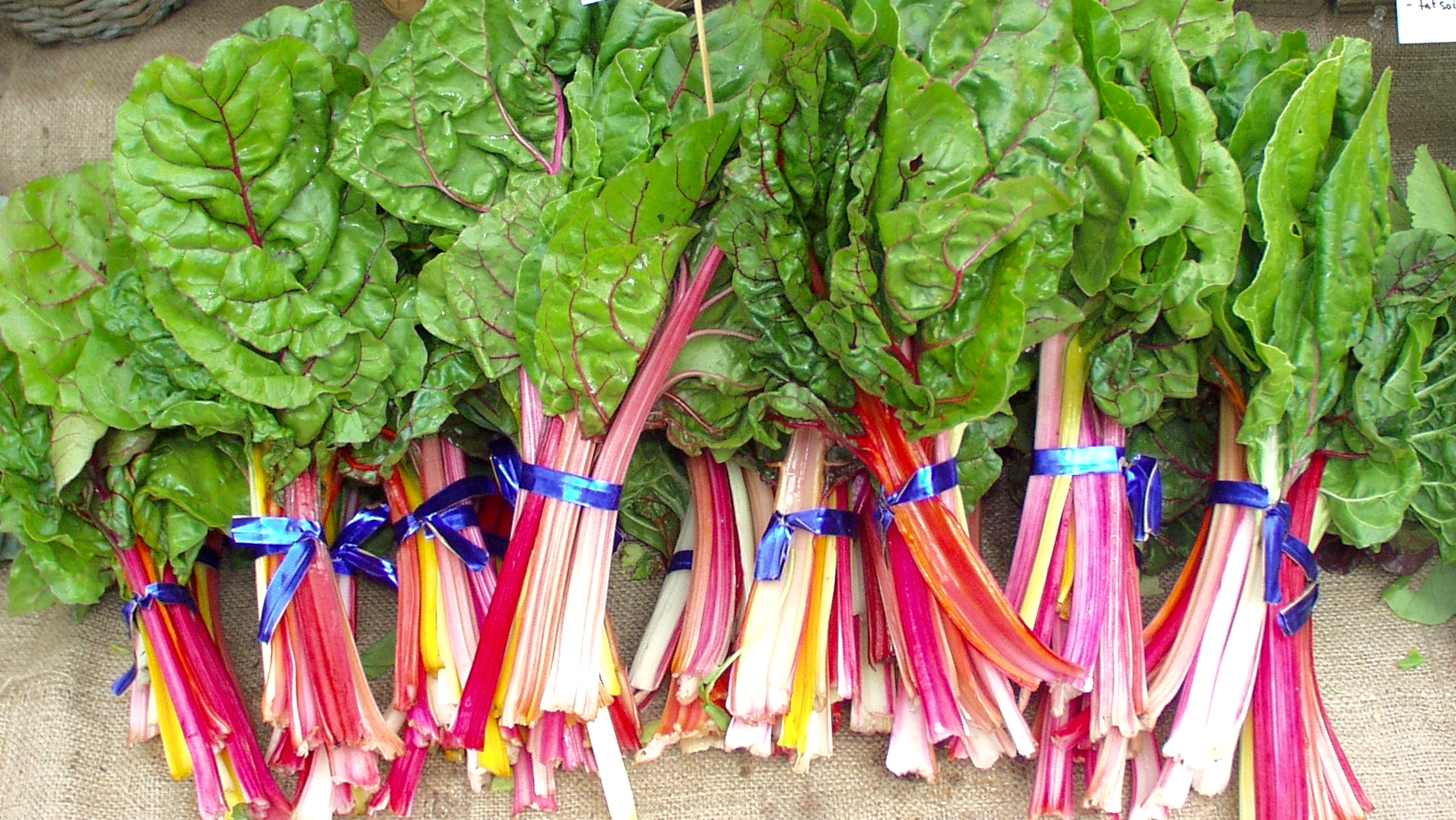Rainbow Chard from Local Roots. Photo copyright 2009 by Zachary D. Lyons.