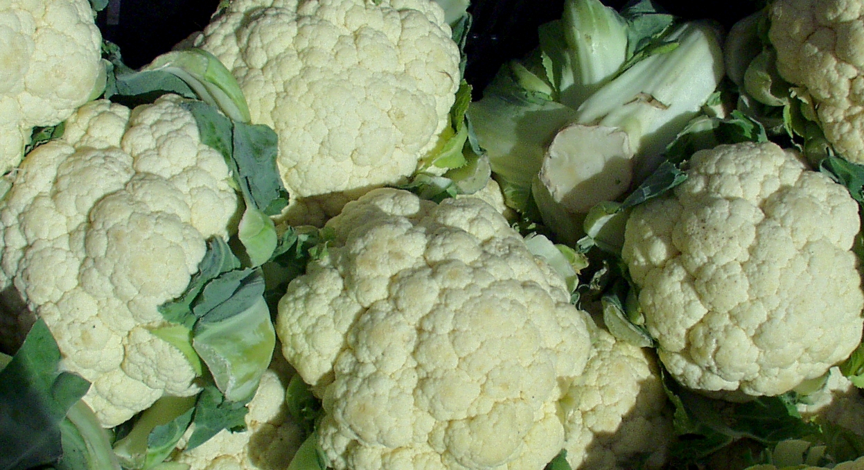 Cauliflower from Sidhu Farms. Photo copyright 2009 by Zachary D. Lyons.
