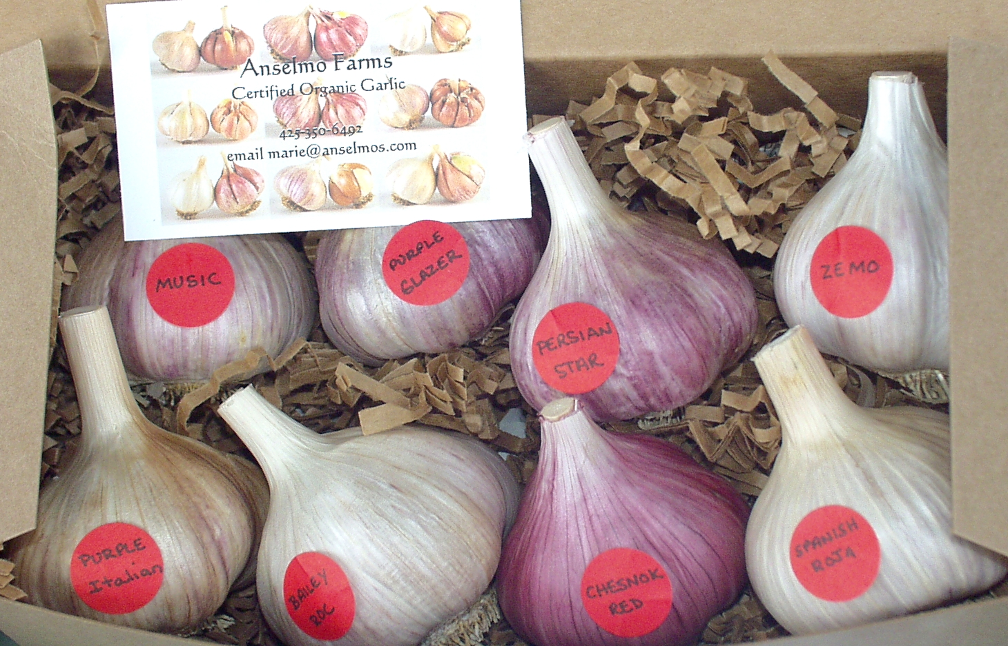 Give the gift of garlic, from Anselmo Farms. Photo copyright 2009 by Zachary D. Lyons.