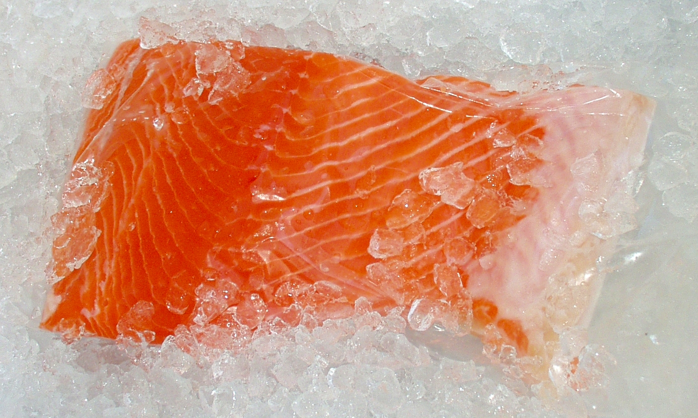 Fresh, wild, Washington king salmon from Wilson Fish. Photo copyright 2010 by Zachary D. Lyons.