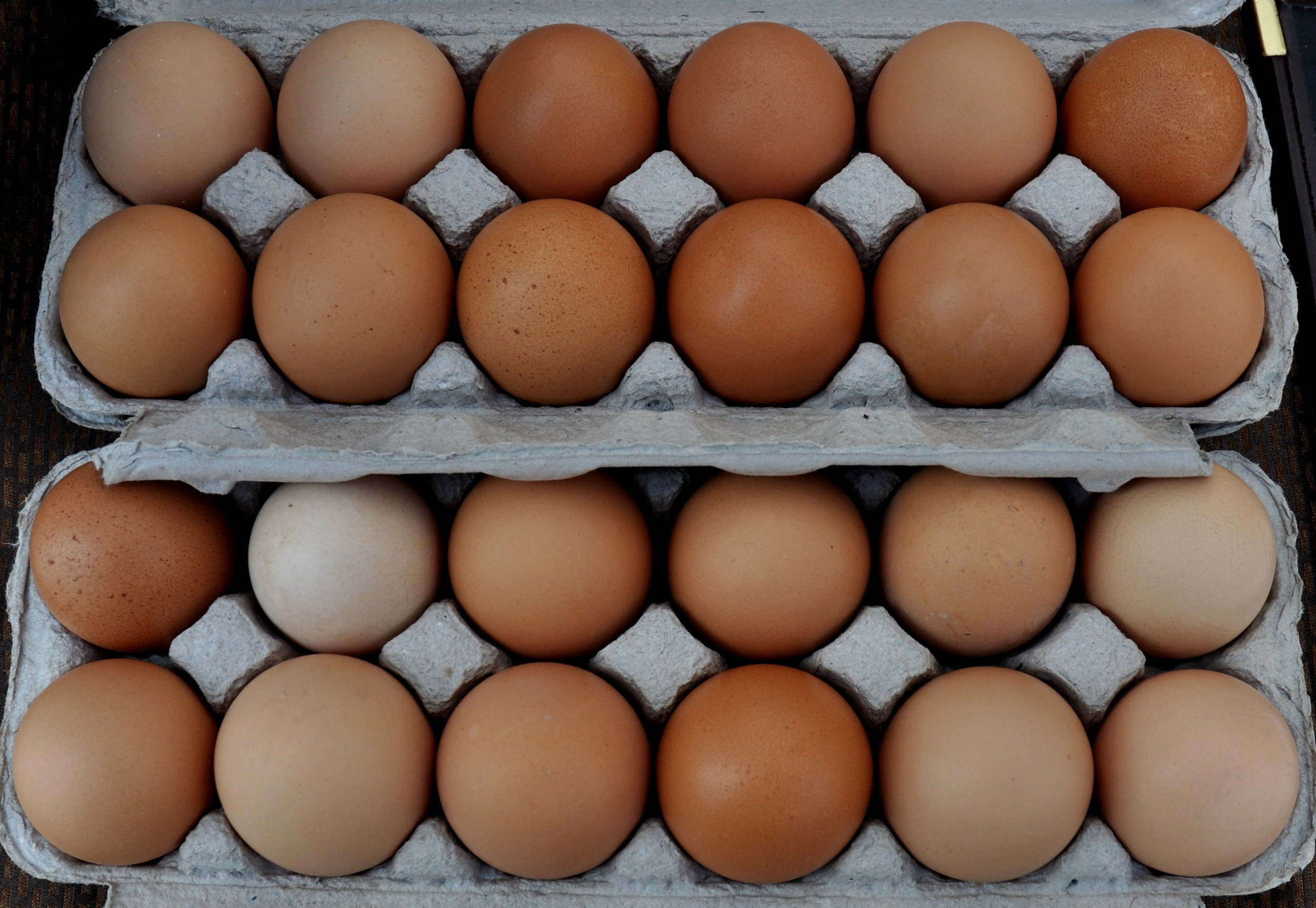 Eggs from Stokesberry Sustainable Farm. Photo copyright 2011 by Zachary D. Lyons.