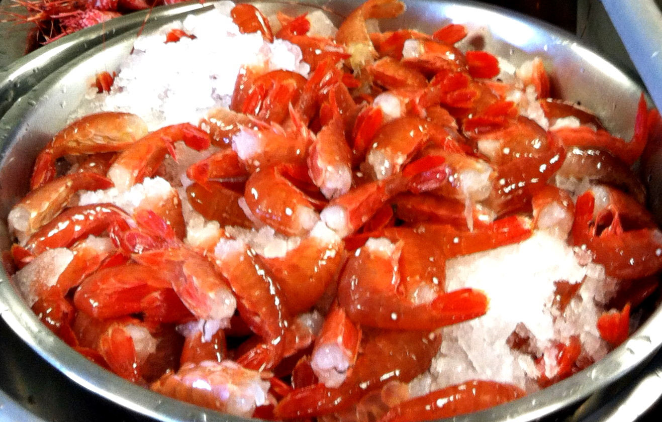 Fresh Hood Canal Spot Prawns from Hama Hama Oyster Company. Photo courtesy Hama Hama Oyster Company.