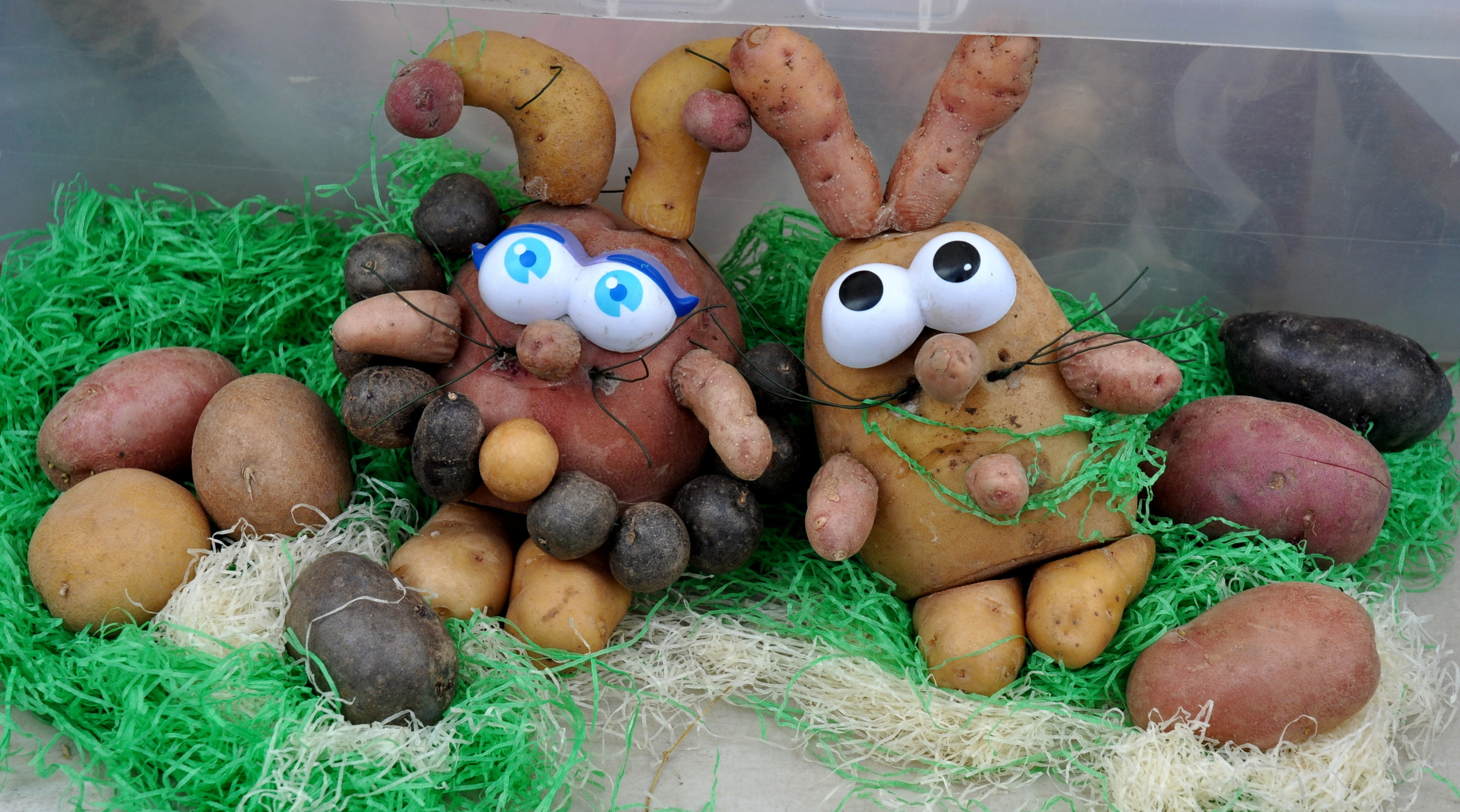 Easter fun from Olsen Farms. Photo copyright 2012 by Zachary D. Lyons.