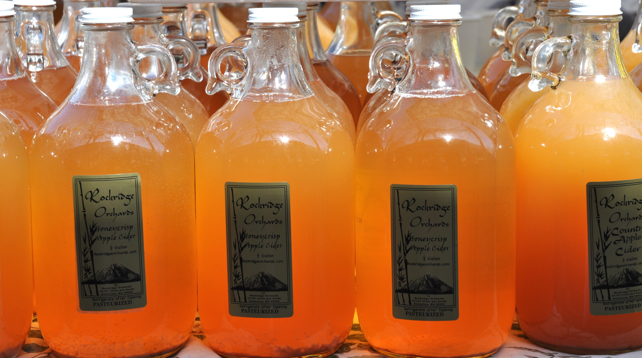 Honey Crisp Apple Cider from Rockridge Orchards. Photo copyright 2012 by Zachary D. Lyons.