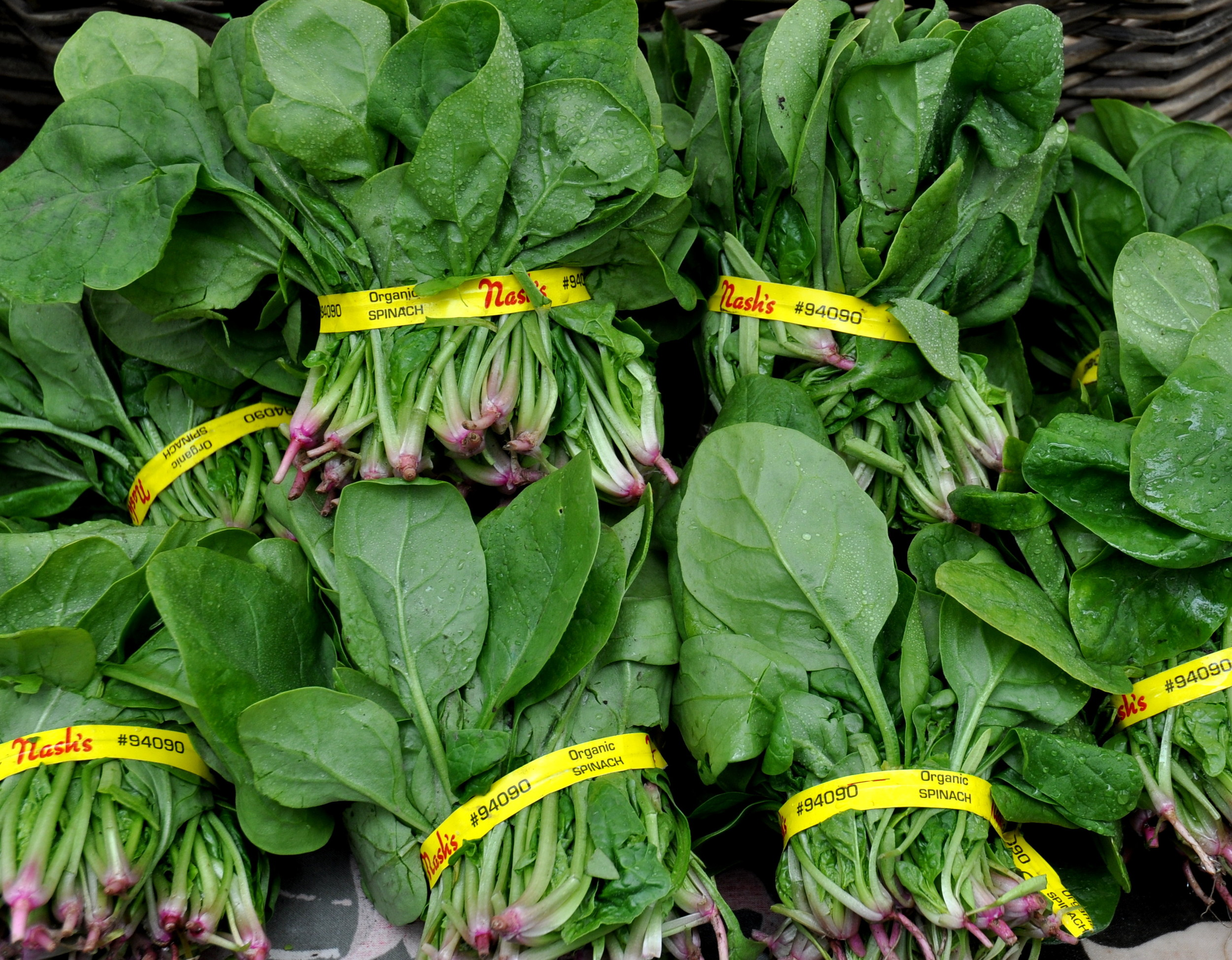 Fresh spinach from Nash's Organic Produce. Photo copyright 2012 by Zachary D. Lyons.