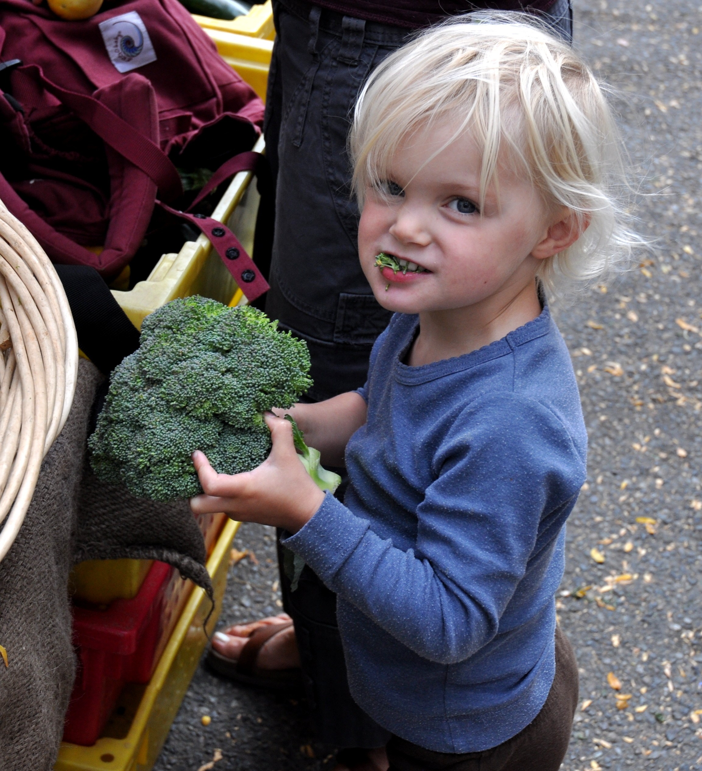 Little Marina loves her some Oxbow Farm broccoli! Photo copyright 2012 by Zachary D. Lyons.
