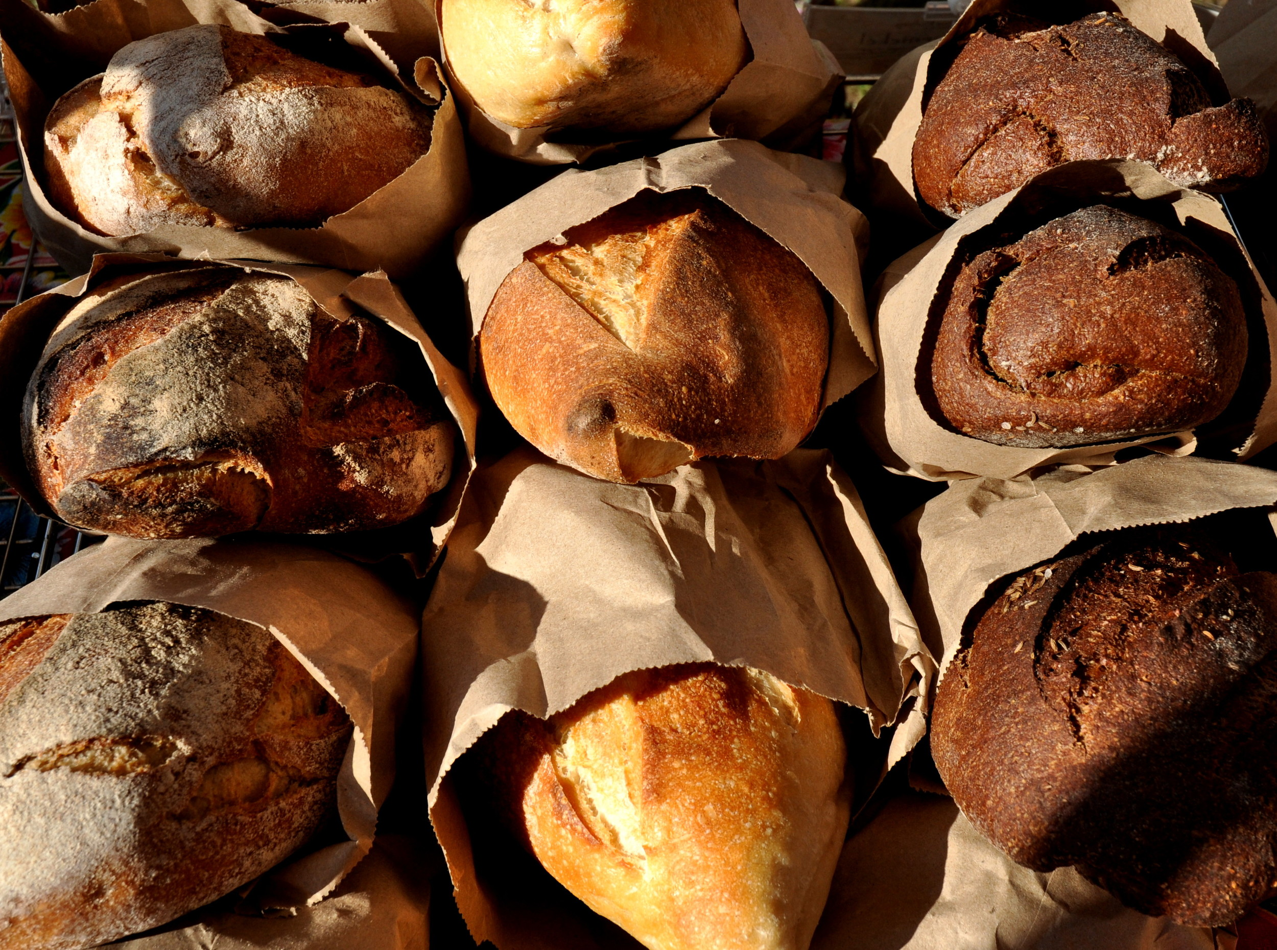 Artisan breads from Tall Grass Bakery. Photo copyright 2012 by Zachary D. Lyons.