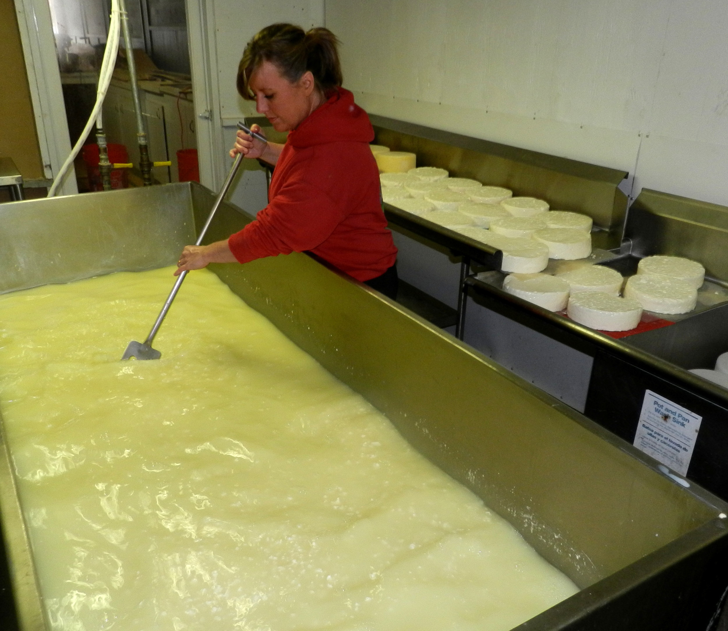 Heather Howell making cheese at Twin Oaks Creamery. Photo courtesy Twin Oaks Creamery.