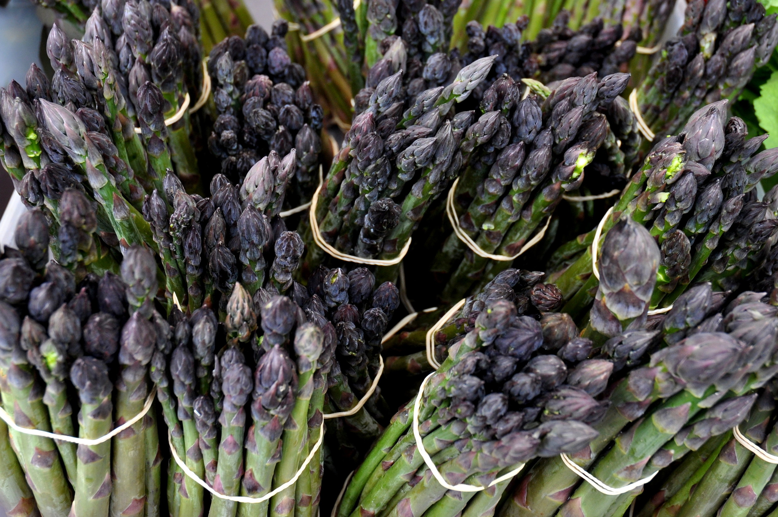 Organic asparagus from Alm Hill Gardens. Photo copyright 2013 by Zachary D. Lyons.