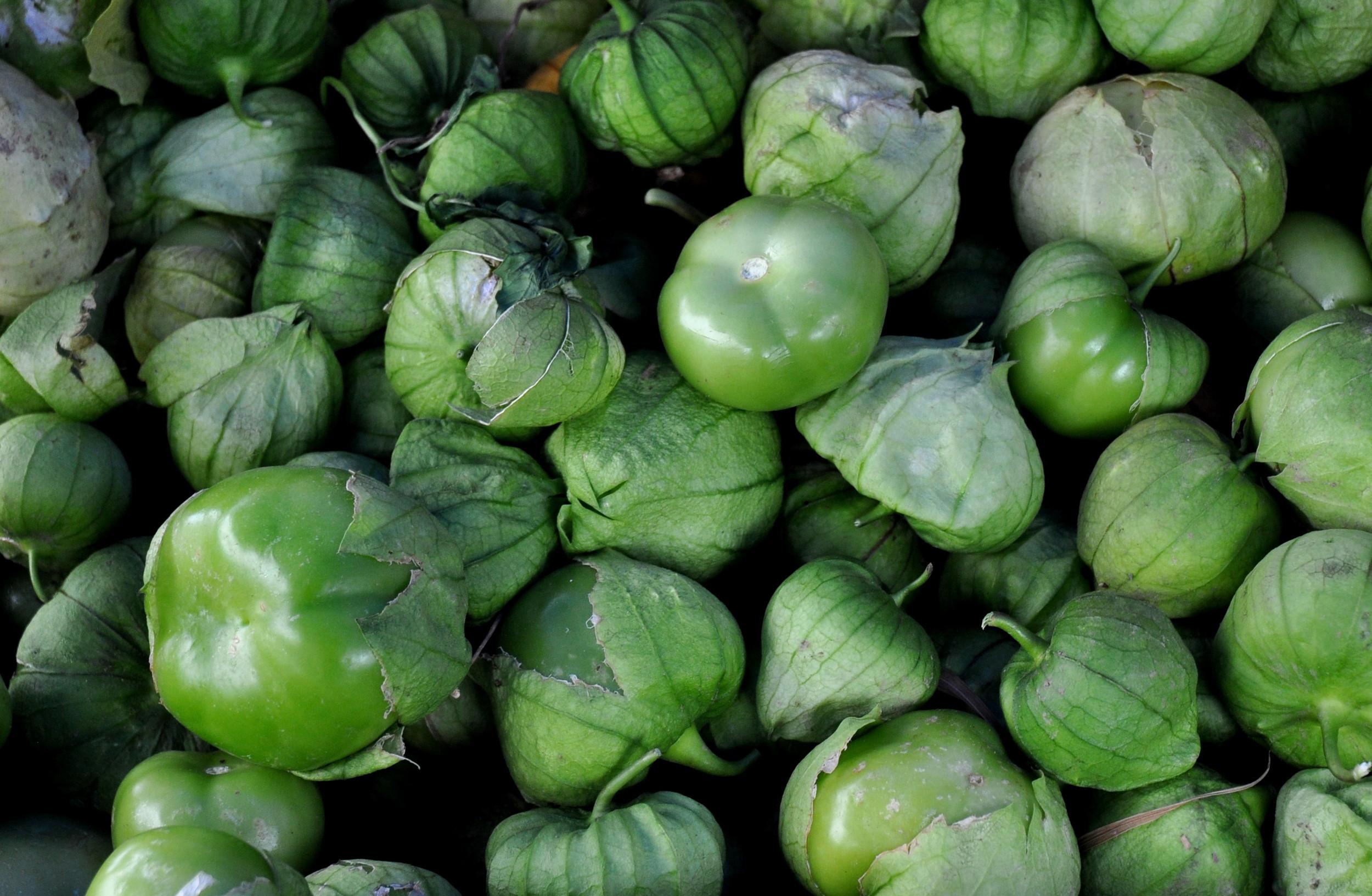 Tomatillos from Alvarez Organic Farms. Photo copyright 2013 by Zachary D. Lyons.