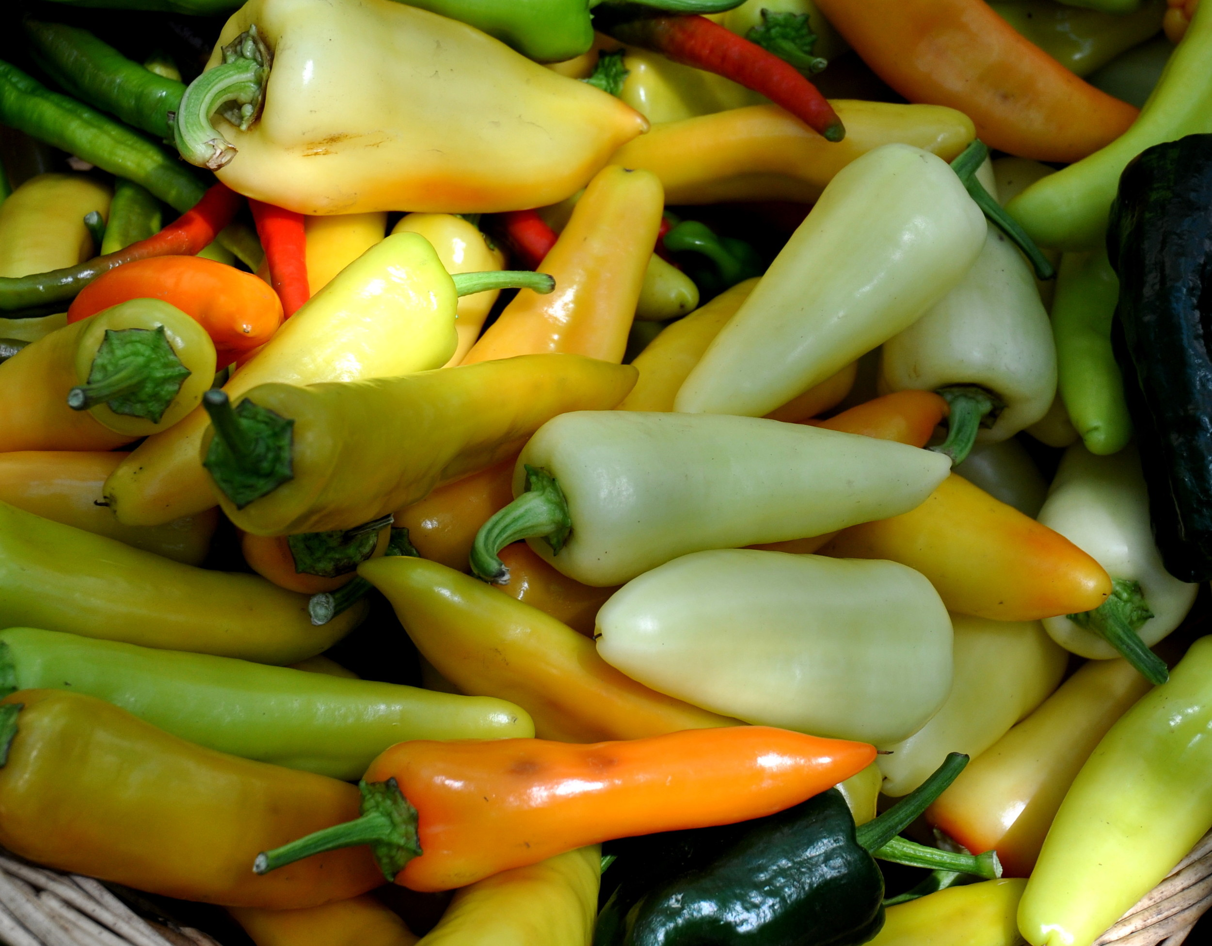 Peppers from Colinwood Farms. Photo copyright 2013 by Zachary D. Lyons.