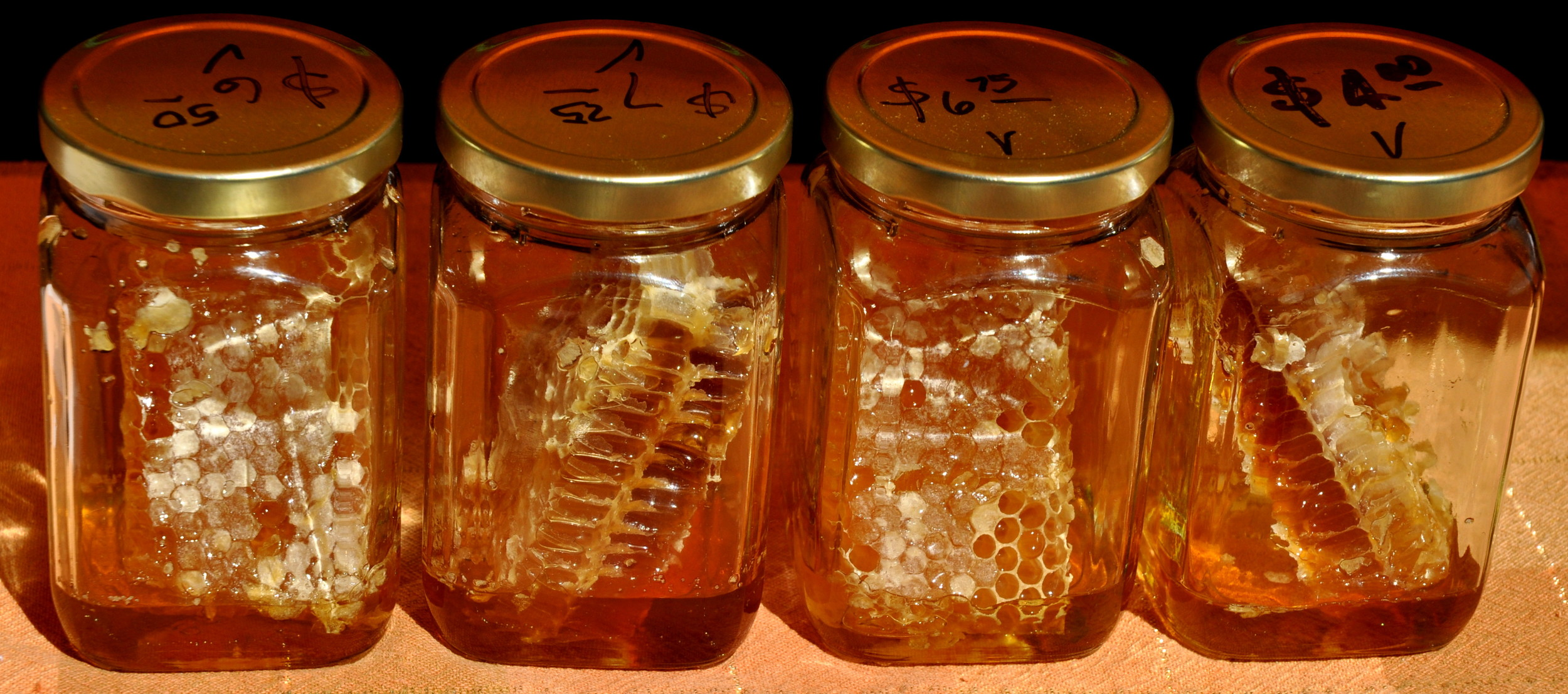 Honeycomb from Golden Harvest Bee Ranch. Photo copyright 2013 by Zachary D. Lyons.