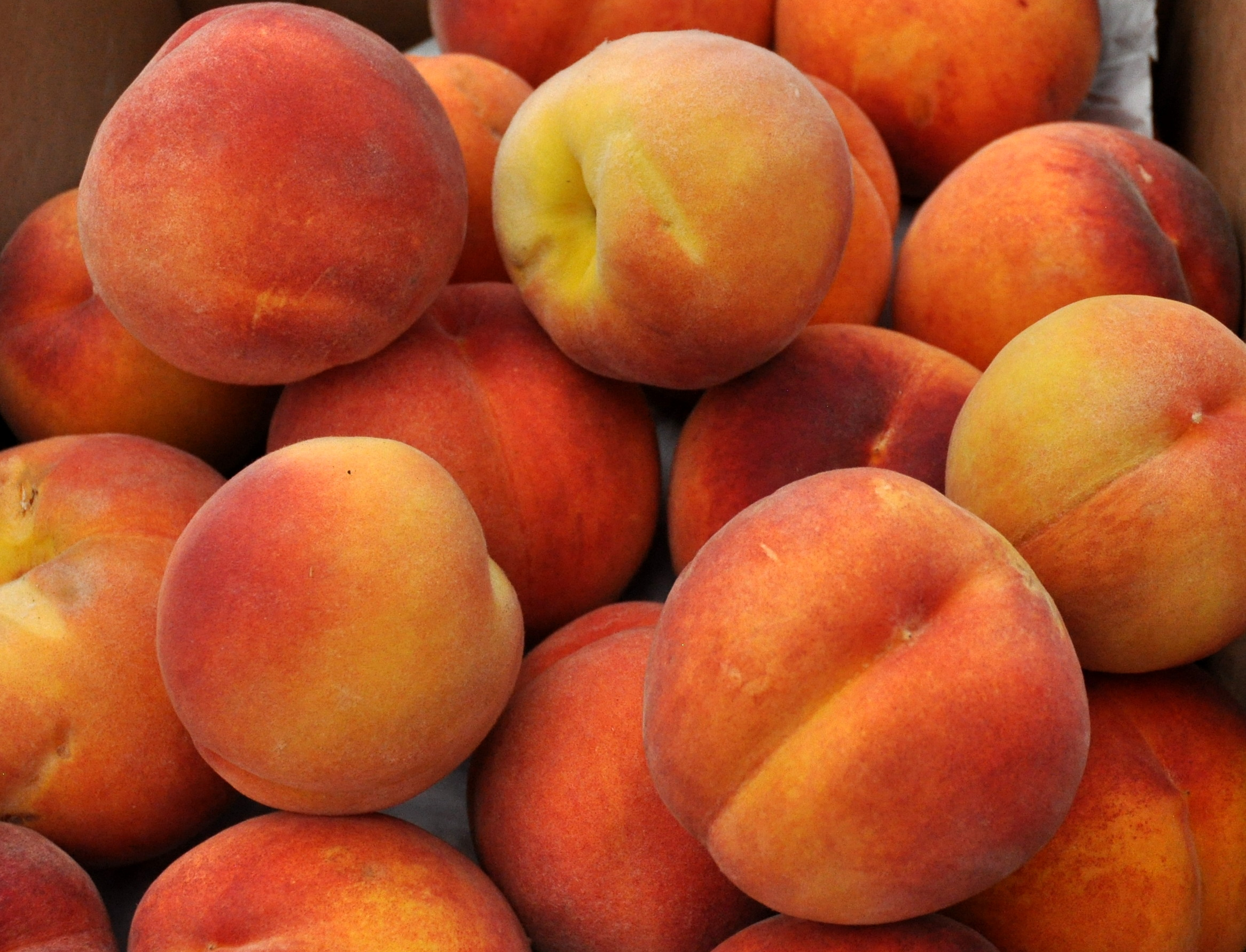 Suncrest peaches from Booth Canyon Orchard at Ballard Farmers Market. Copyright 2014 by Zachary D. Lyons.