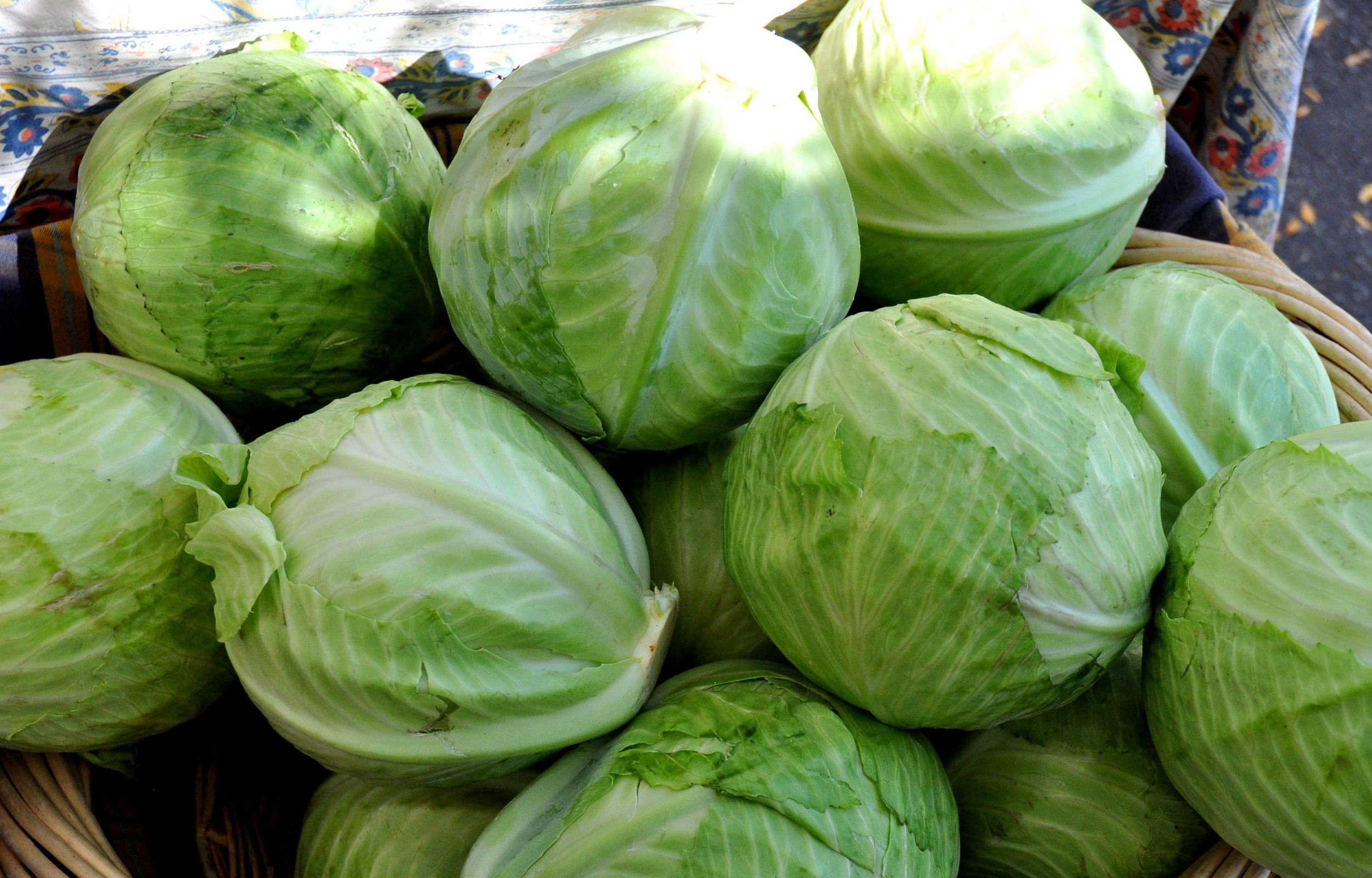 Green cabbage from Nash's Organic Produce at Ballard Farmers Market. Copyright Zachary D. Lyons.