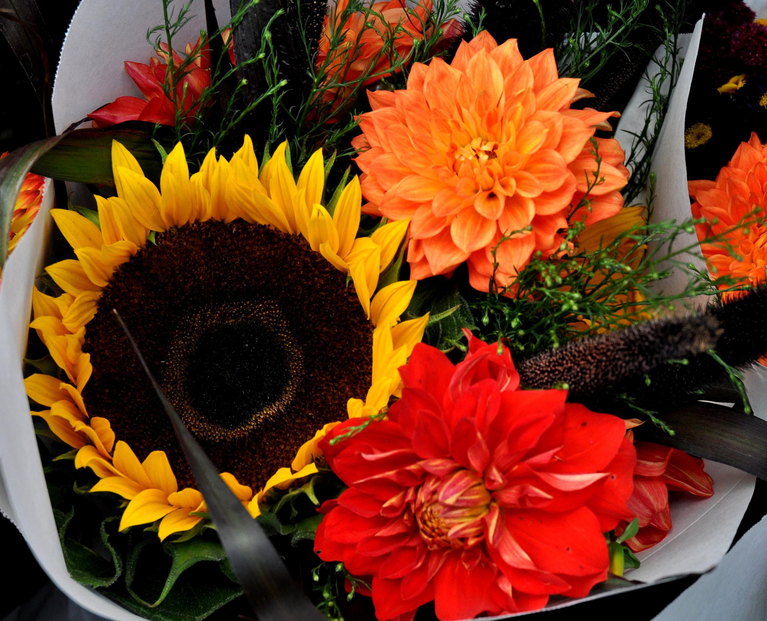 Late summer flower bouquet from Pa Garden at Ballard Farmers Market. Copyright Zachary D. Lyons.