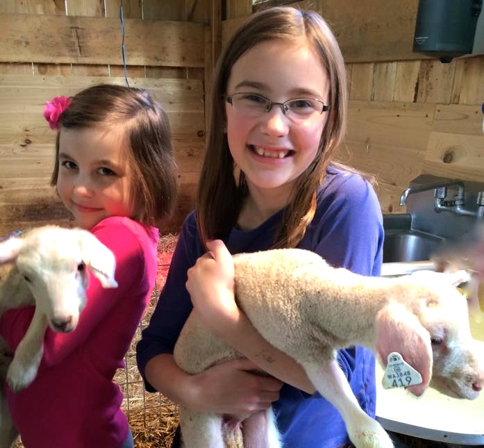 Happy Swanson family, including newborn lambs photo 2015