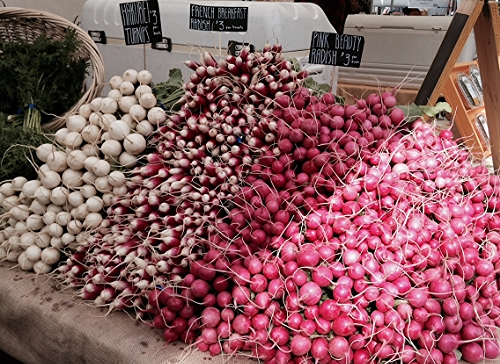 A Mountain of Radishes from One Leaf Farm
