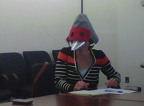 Nancy as a Crane participating in meeting.