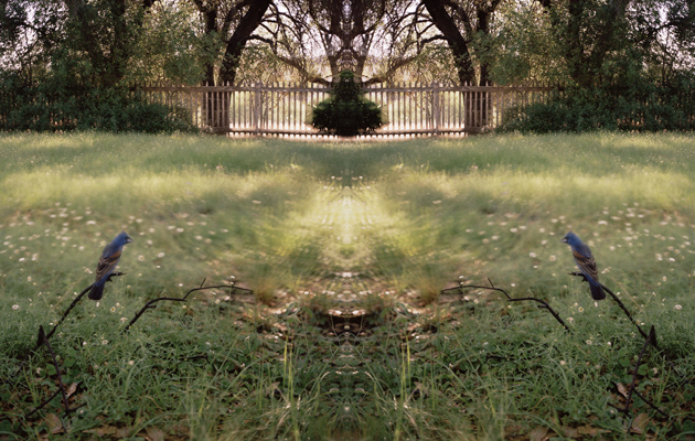 Jean-Luc Mylayne, No. 407, April May 2006. Chromogenic print, 153 x 300 cm.