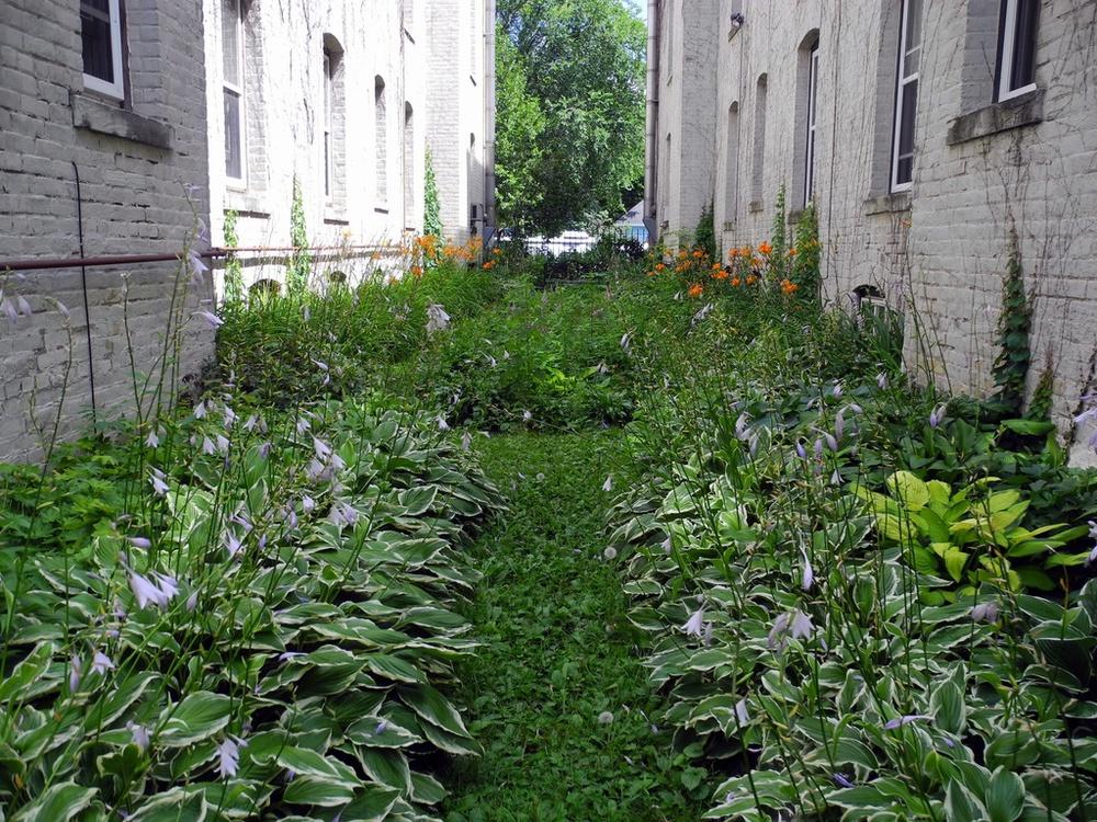Fenced Courtyard.jpg