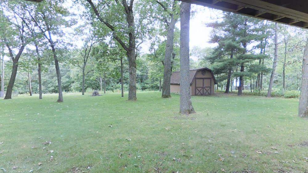 backyard .jpg