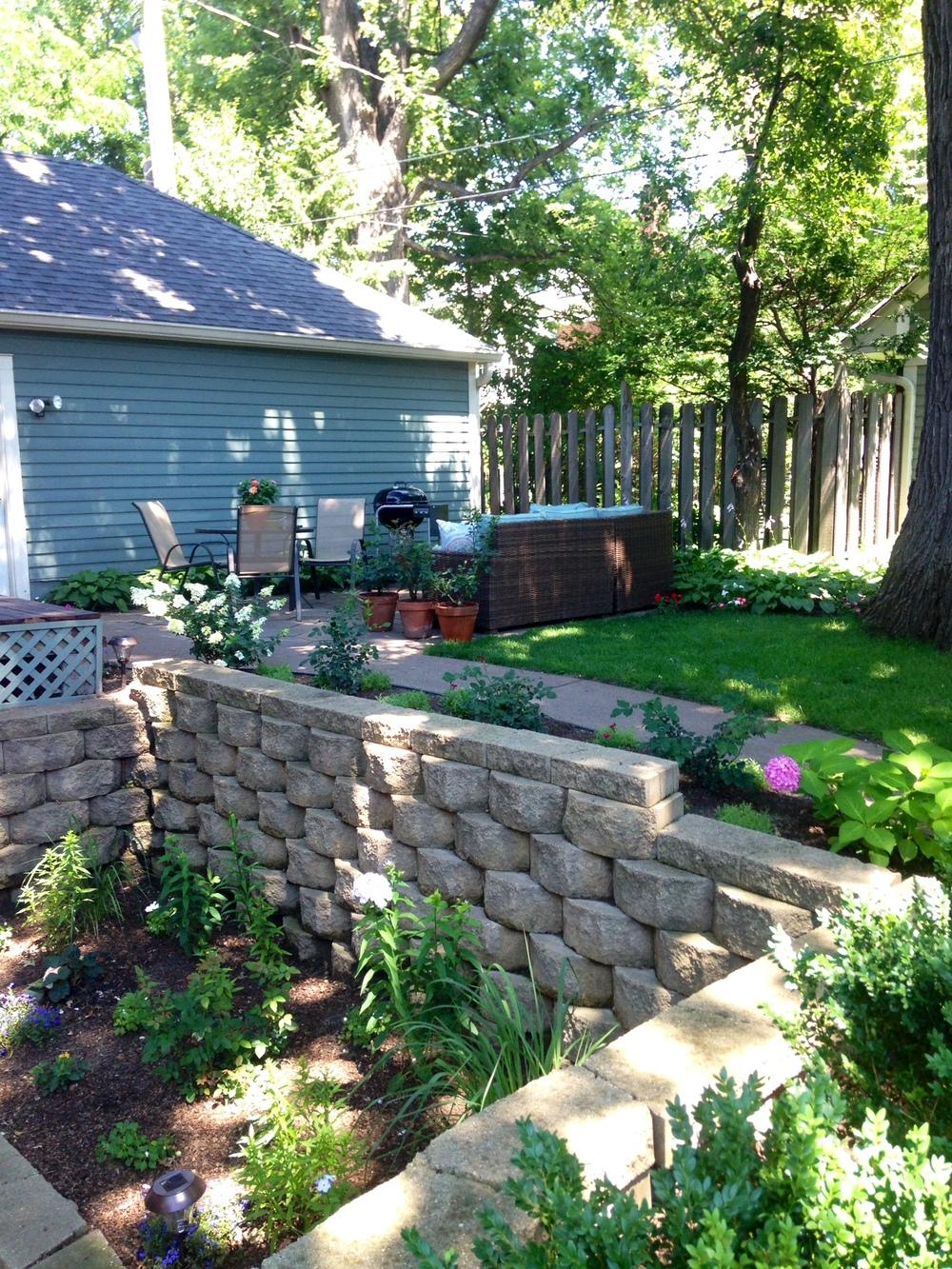 Backyard 2.JPG