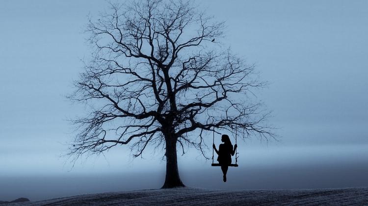 tree-3080406_1280.jpg