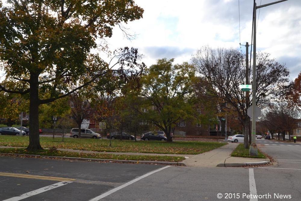 The small triangular park at 7th and Decatur where the assault occurred.