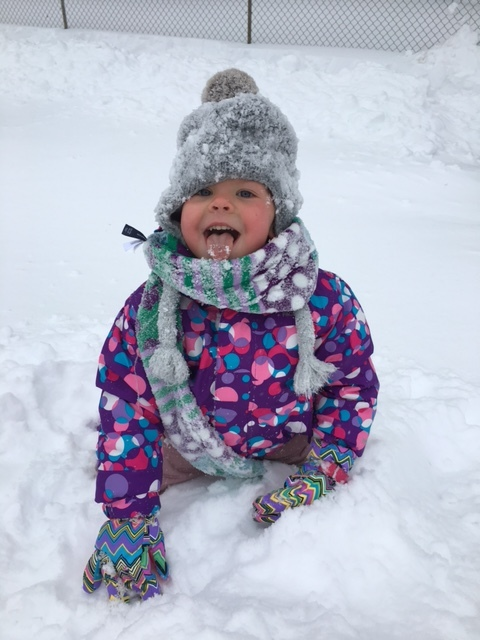 Loves the snow!  (photo: Veronica Weaver)