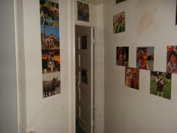 Animal posters glued to the walls.