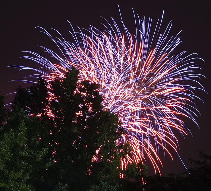 Flickr photo of fireworks & tree courtesy of  dcJohn .
