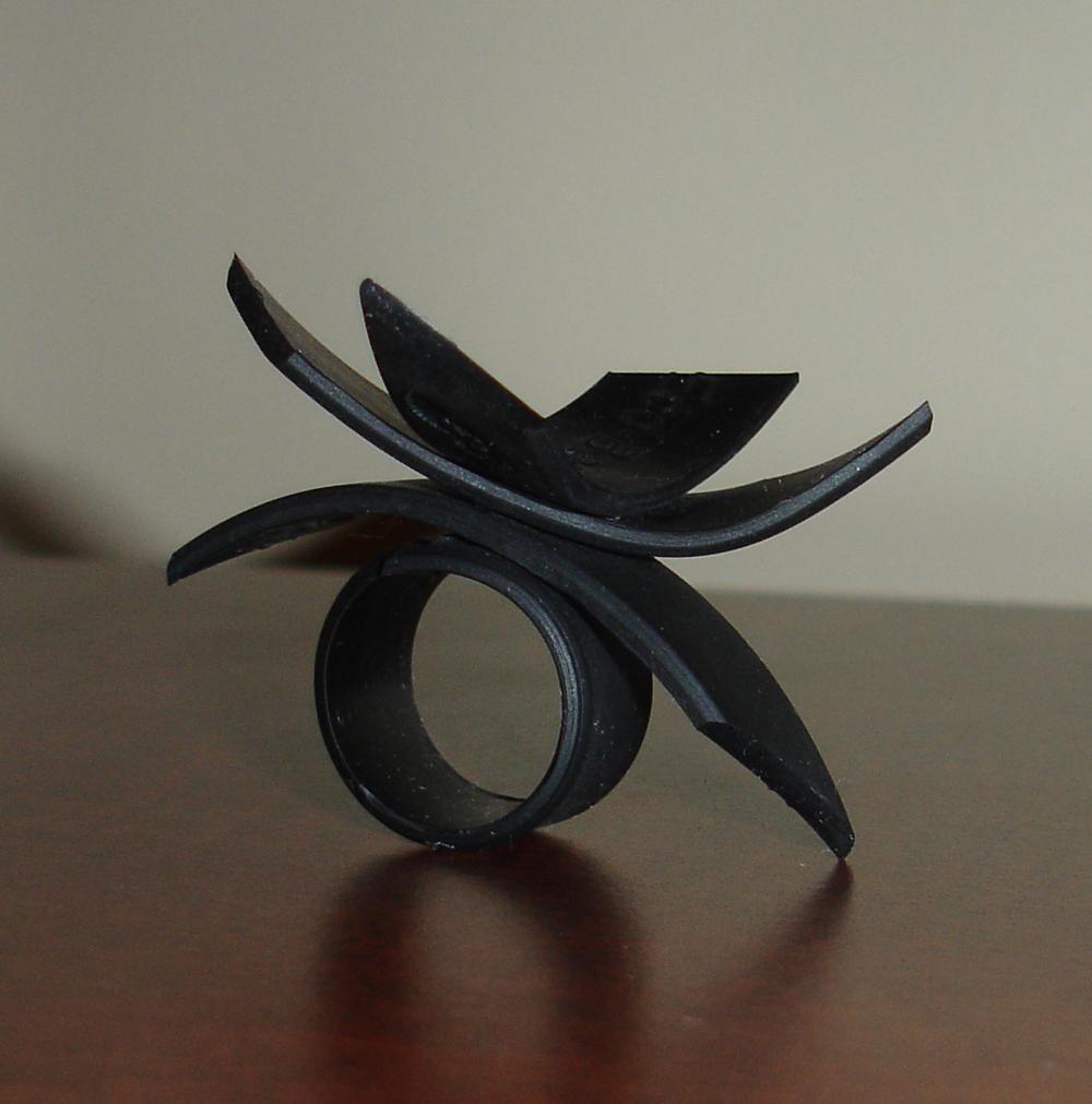 Ring_4_a.jpg
