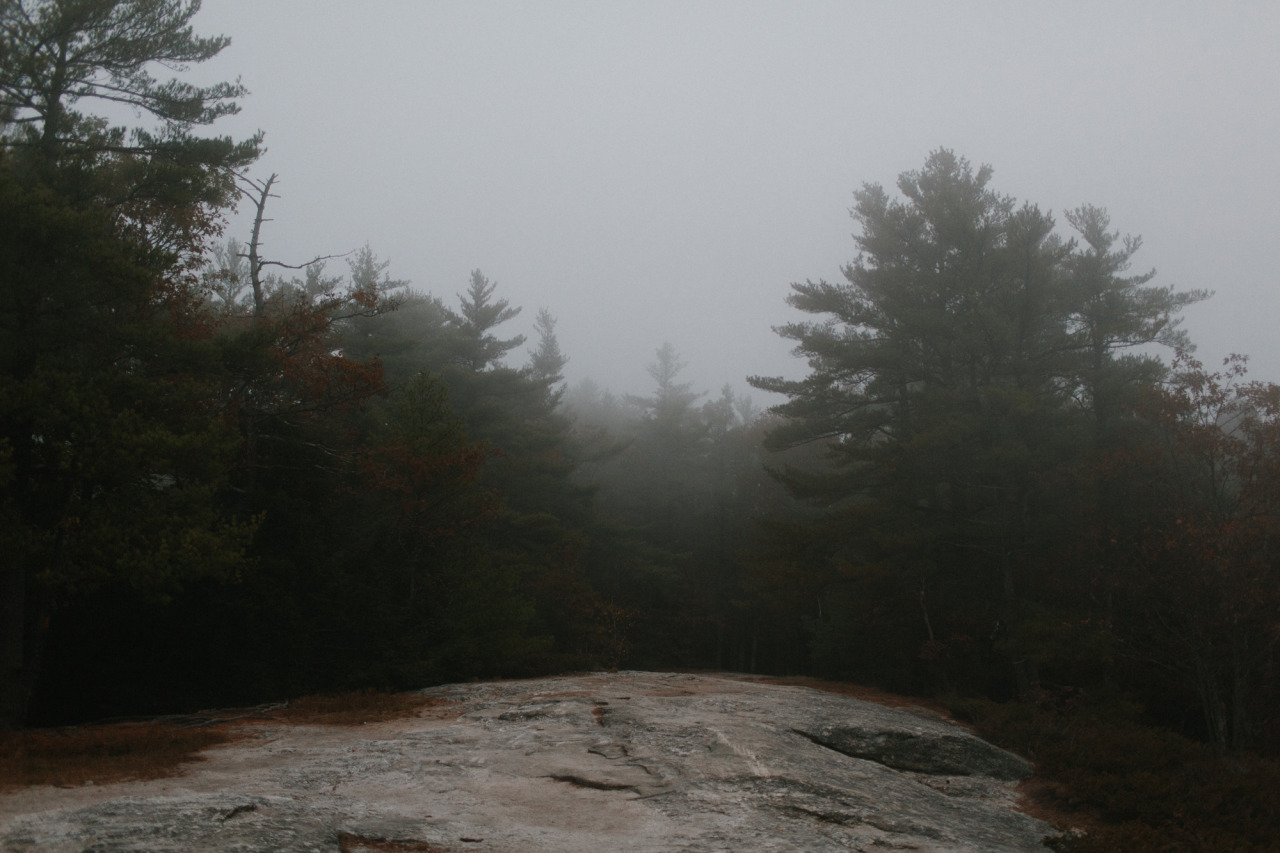 Maine // October 2013