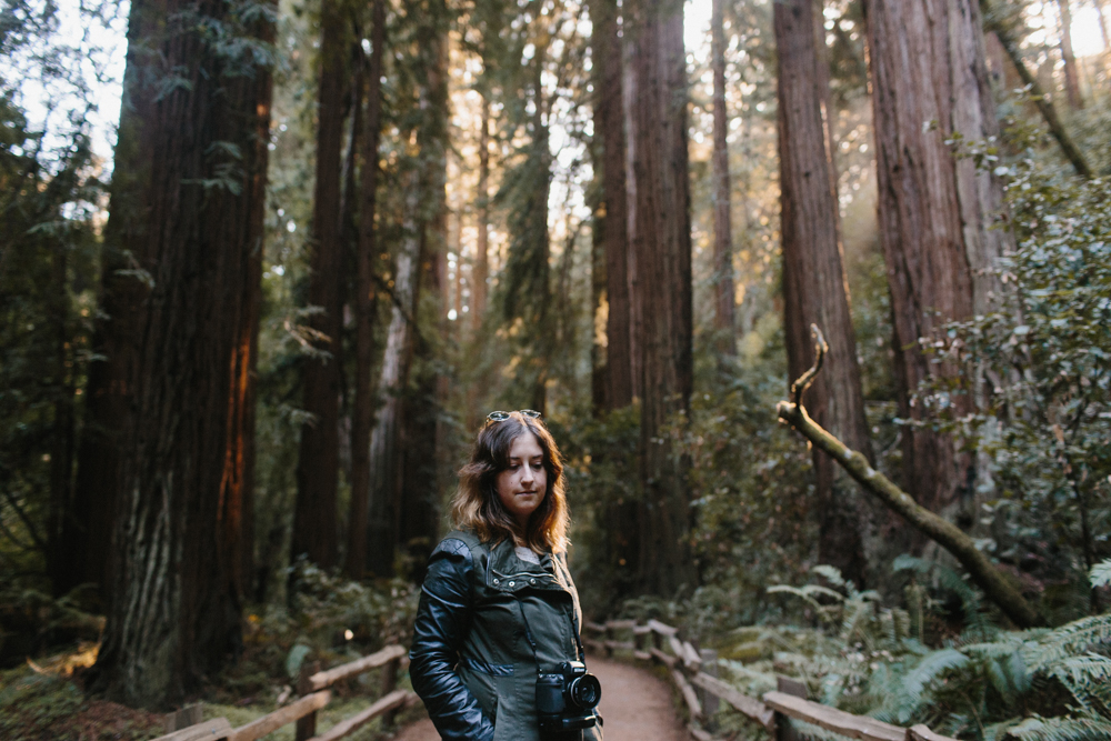 Fairfax // Muir Woods