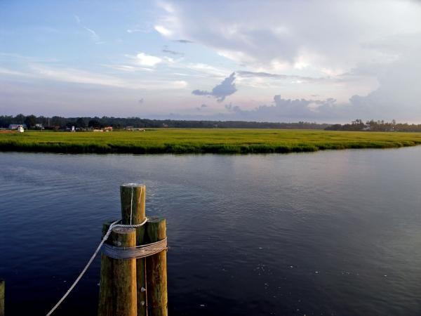 Tidal Marshes, Sapelo Island (destination360.com)