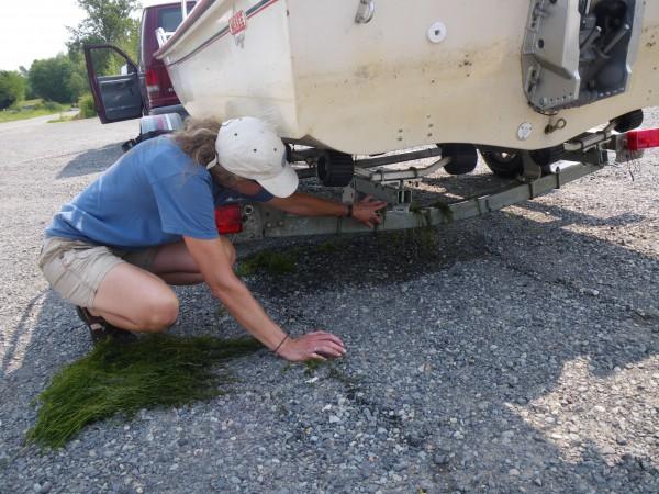"""""""Clean, Drain and Dry"""" (photo via walpa.org)"""