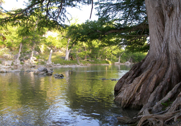 Guadalupe River State Park (wikimedia.org)