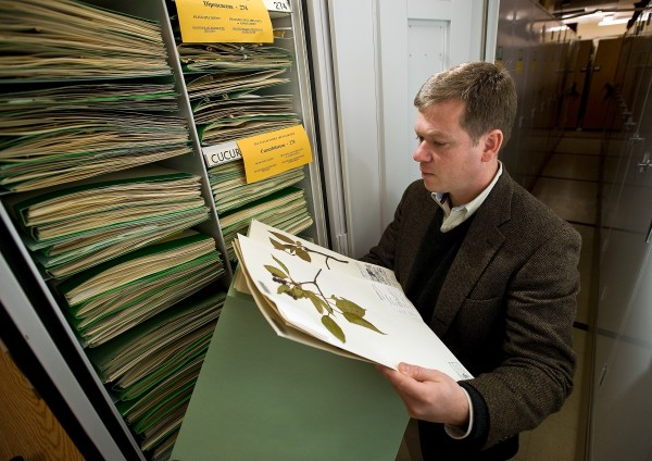Ken Cameron, director, searches catalogued specimens (news.wisc.edu)