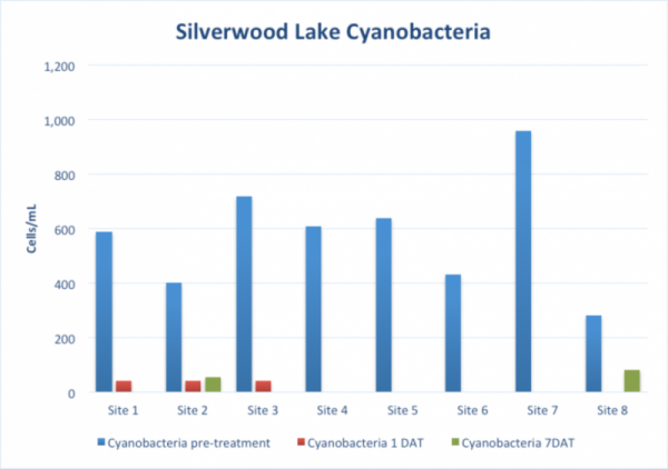 Cyanobacteria cell densities from Silverwood Lake samples through time.