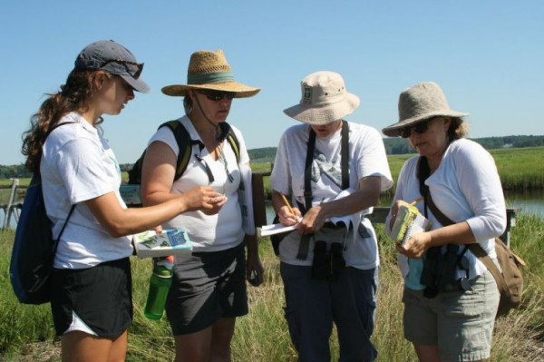 Volunteers at Scarborough Marsh (courtesy of keepmecurrent.com).